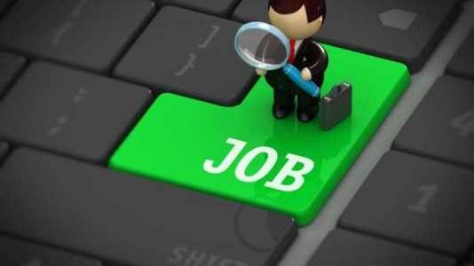 locuri de munca vacante