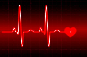 viata inima puls