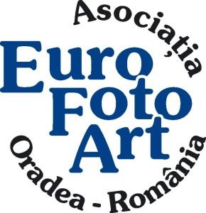 sigla euro foto art oradea