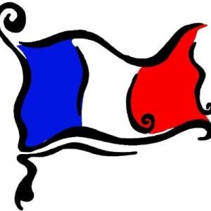 steag francez