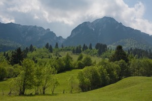 Rolling hills leading into the Piatra Craiului Mountains