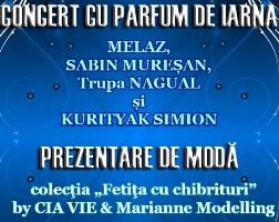 AFIS Concert TG Craciun 2013