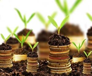 plan de afaceri bani monede monezi pamant