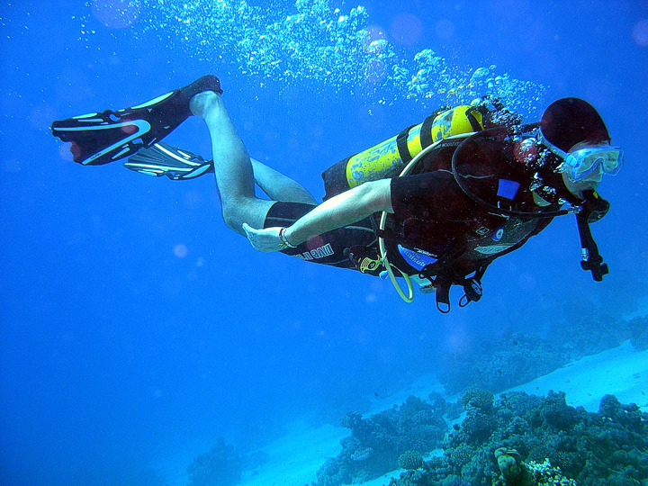 Diver Image
