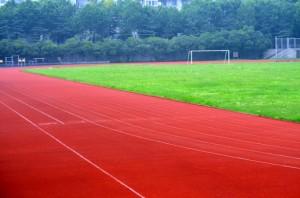 teren de sport sursa foto publicdomainpictures punct com