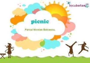 picnic party 03 august