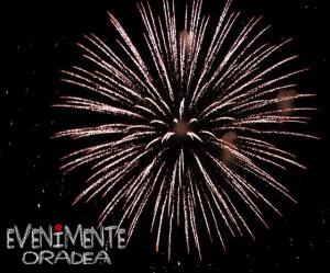 artificii oradea copy