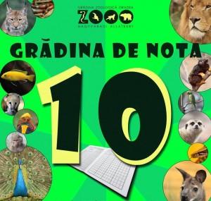 nota 10 zoo oradea