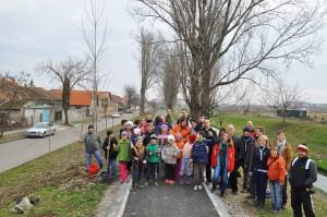 plantare arbori oradea