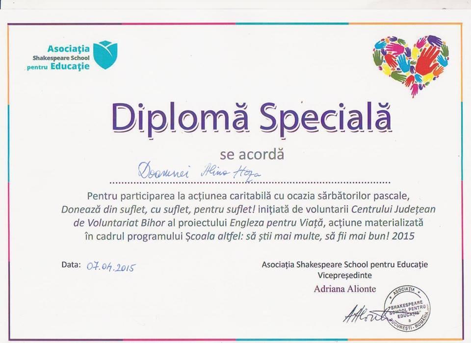 diploma 2 alina hoza