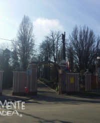 cimitirul rulikowski municipal oradea
