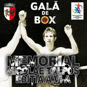 salonta 2016 concurs box
