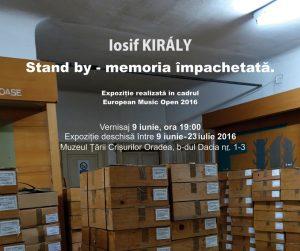muzeul țării crișurilor oradea 2016