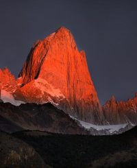 red-fitz-roy