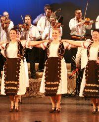 concert, spectacol folcloric, preț bilet
