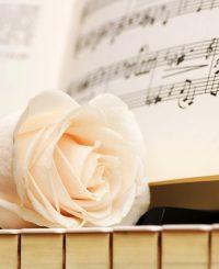 pian, trandafir, partitura, muzica